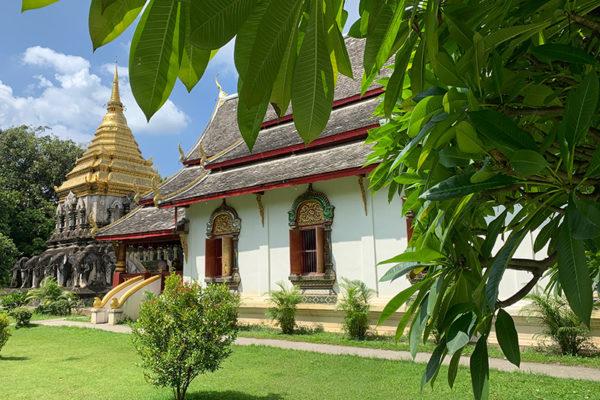 6_CJCOM_VOYAGE_THAILANDE_YVES-ROCHER